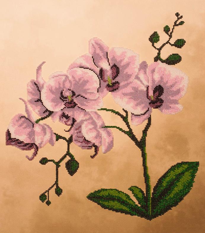 Рисунок для вышивки орхидеи 70