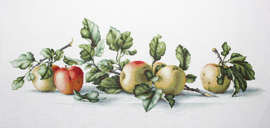 Схема вышивки крестом яблоки 32
