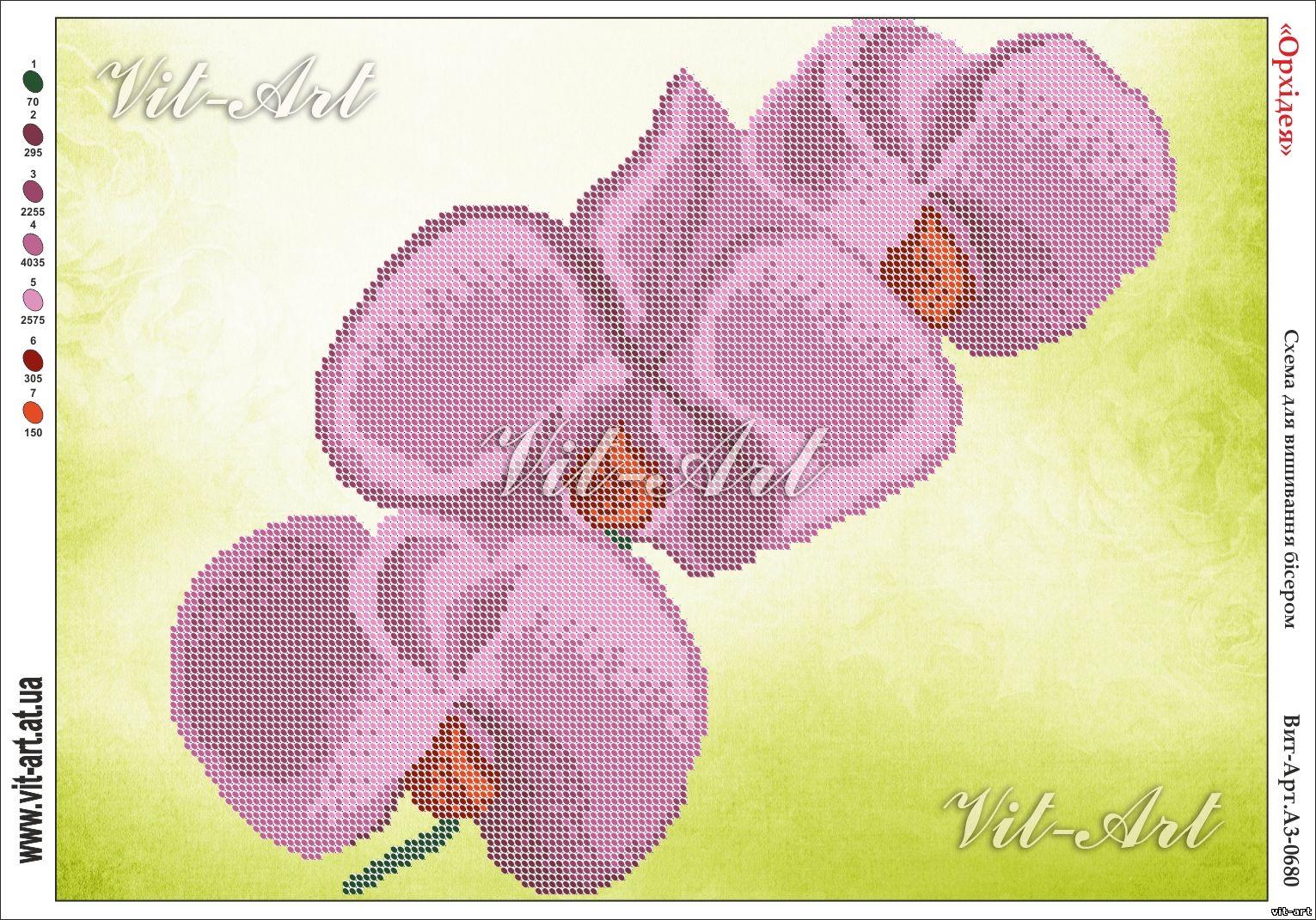 Схема вышивка бисер орхидея 663