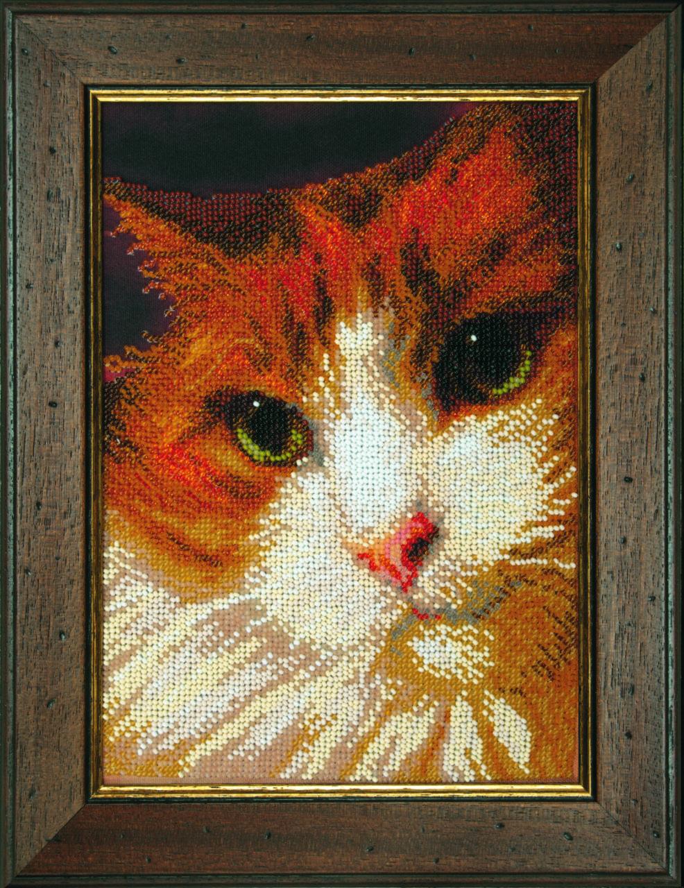 Вышивка бисером кота 55