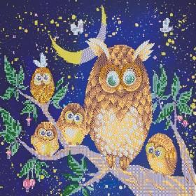 Схема для вышивки бисером на холсте Ночные птицы