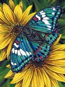 Набор для выкладки алмазной мозаикой Бабочка на гербере