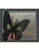 Набор для вышивки бисером на прозрачной основе Бабочка Parides sesostris zestos