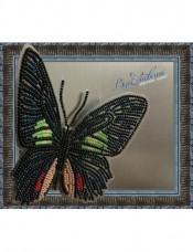 Набор для вышивки бисером на прозрачной основе Бабочка Parides sesostris zestos Вдохновение BGP-006