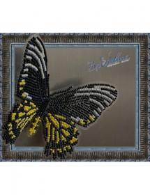 Набор для вышивки бисером на прозрачной основе Бабочка Золотая Птицекрылка Радамант