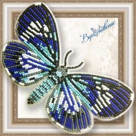 Набор для вышивки бисером на прозрачной основе Бабочка Hypocrita confluens
