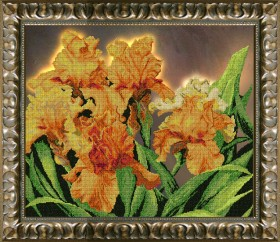 Набор для вышивки бисером Пламенное танго, , 1 142.00грн., 11012, Краса и творчiсть, Большие наборы
