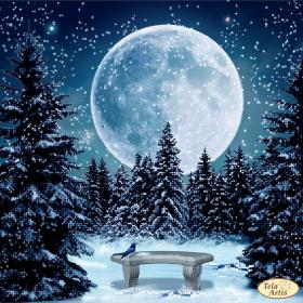 Схема вышивки бисером на атласе Луна