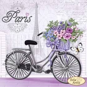 Схема вышивки бисером на атласе Парижский велосипед