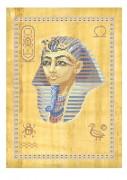 Схема вышивки бисером на габардине Папирус