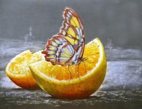 Набор для выкладки алмазной мозаикой Бабочка на апельсине