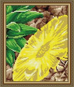 Набор для выкладки алмазной техникой Ананас, , 280.00грн., АТ5570, Art Solo, Натюрморты