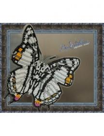 Набор для вышивки бисером на прозрачной основе Бабочка Харакс Нобилис, , 150.00грн., BGP-030, Вдохновение, Открытки, магниты