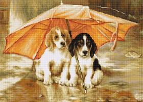 Набор для вышивки крестом Двое под зонтом, , 344.00грн., В550, Luca-S, Собака символ 2018 года своими руками