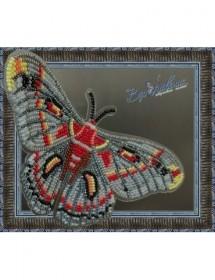 Набор для вышивки бисером на прозрачной основе Бабочка Гиалофора кекропия