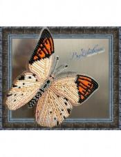 Набор для вышивки бисером на прозрачной основе Бабочка Гебомоя Главк Вдохновение BGP-018