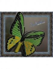 Набор для вышивки бисером на прозрачной основе Бабочка Птицекрыл Голиаф Вдохновение BGP-020