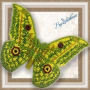 Набор для вышивки бисером на прозрачной основе Бабочка Ауривиллиус трирамис