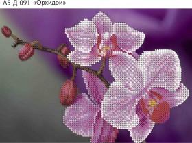 Схема для вышивки бисером на габардине Орхидеи Acorns А5-Д-091 - 30.00грн.