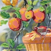 Схема для вышивки бисером на холсте Любитель яблок