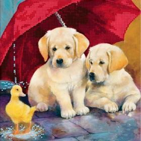 Схема вышивки бисером на холсте Двое под зонтом, , 60.00грн., МА-022, Страна Рукоделия, Собака символ 2018 года своими руками