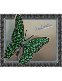 Набор для вышивки бисером на прозрачной основе Бабочка Графия Агамемнон