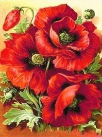 Набор для выкладки алмазной мозаикой Красные маки, , 430.00грн., DM-006, DIAMONDMOSAIC, Цветы