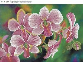 Схема для вышивки бисером на габардине Орхидея Фаленопсис Acorns А4-К-514 - 45.00грн.