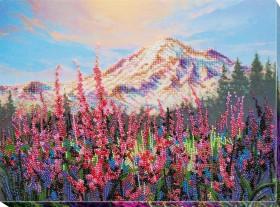 Набор для вышивки бисером Пока цветет Иван - чай  Абрис Арт АВ-732 - 498.00грн.