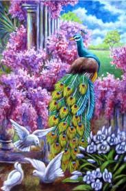 Набор для выкладки алмазной мозаикой Павлин и голуби Алмазная мозаика DM-302 - 760.00грн.