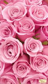 Схема для вишивання бісером на атласі Рожеві сни Tela Artis (Тэла Артис) ТА-407 - 98.00грн.