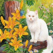 Рисунок на ткани для вышивки бисером Белый кот