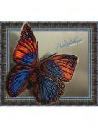 Набор для вышивки бисером на прозрачной основе Бабочка Агриас Нарцисс