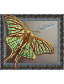 Набор для вышивки бисером на прозрачной основе Бабочка Грельсия Изабеллы