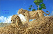 Схема вышивки бисером на атласе Лев и львица