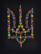 Набор для вышивки бисером Символ Украины