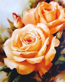 Набор для выкладки алмазной мозаикой Букет чайных роз Алмазная мозаика DM-037 - 640.00грн.