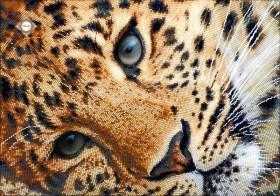 Схема для вышивки бисером на атласе Золотой леопард