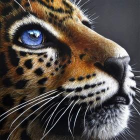 Набор для выкладки алмазной мозаикой Взгляд леопарда