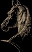 Схема вышивки бисером на габардине Конь