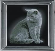 Набор для вышивки крестом Британская короткошерстная кошка