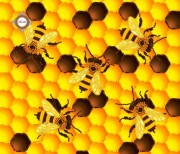 Пошитый клатч для вышивки бисером Золотые пчелки
