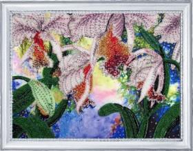 Набор для вышивки бисером Сияние орхидей Баттерфляй (Butterfly) 230Б - 432.00грн.