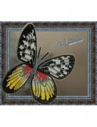 Набор для вышивки бисером на прозрачной основе Бабочка Делия Тисбе