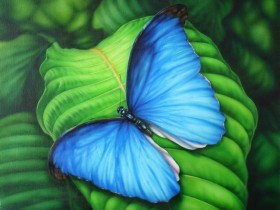 Набор для выкладки алмазной мозаикой Синяя бабочка