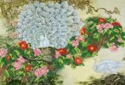 Рисунок на ткани для вышивки бисером Белые павлины