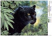 Рисунок на холсте для вышивки бисером Черная пантера