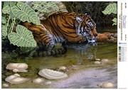Рисунок на атласе для вышивки бисером Тигр у воды