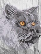 Рисунок на ткани для вышивки бисером Кошачий взгляд