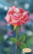 Рисунок на ткани для вышивки бисером Нежная красавица